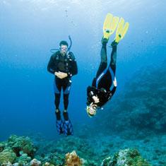 buoyancy-circle
